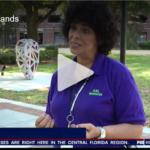 Fox News: Helping Hands